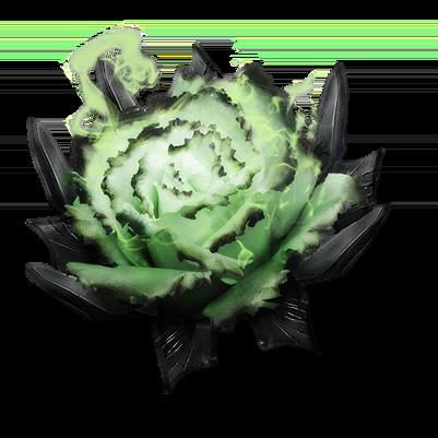 Dredgen Yor's Rose